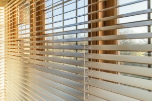 Custom House Plan- Window treatments